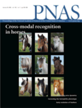 Cover PNAS 2009.106.png
